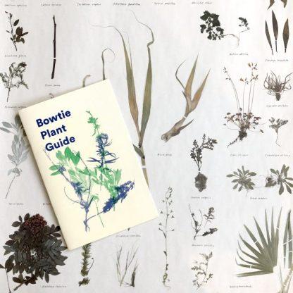 Bowtie Plant Zine & Poster Pack